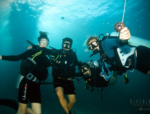 What skills will I practice in my PADI Open Water Course?