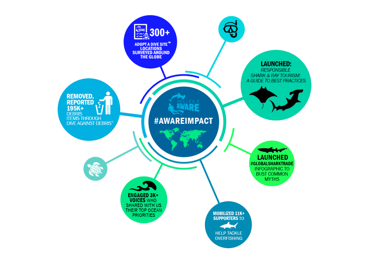 #TeamOcean Challenge Project Aware & Team Ninja Dive Ninja Expeditions Save our Oceans