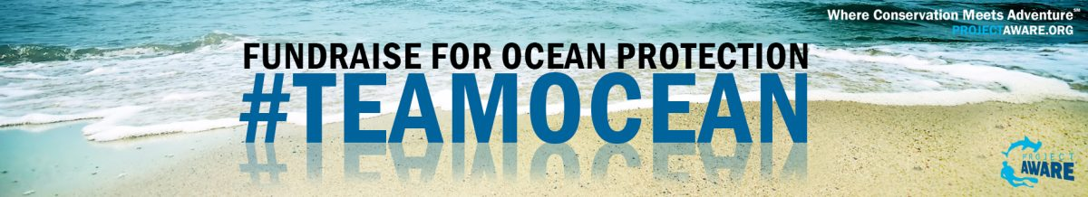 #teamocean challenge project aware ocean conservation