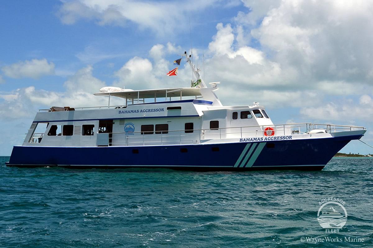 Bahamas liveaboard scuba diving