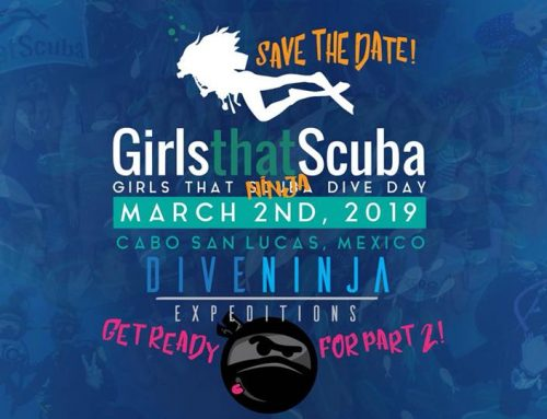 Girls That Scuba Day 2019 in Cabo San Lucas
