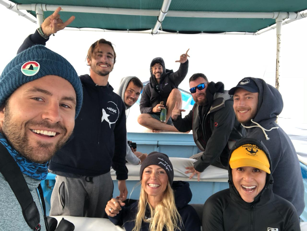 Shark diving in The Bahamas with Dive Ninja Expeditions