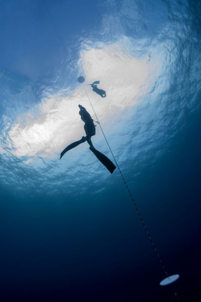 PADI & SSI Freediving courses in Mexico
