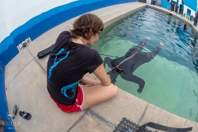 Learn to Freedive in Cabo