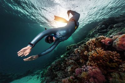PADI & SSI Freediving training in Cabo San Lucas Mexico