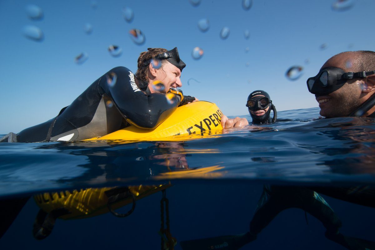 Freediving Course in Mexico