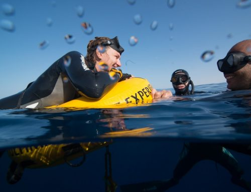 Why Should I Take a Freediving Course?