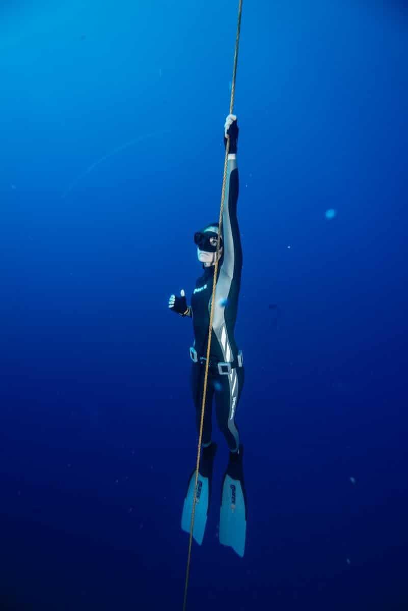 scuba diving during the Dive Ninjas Socorro Shark Research trip