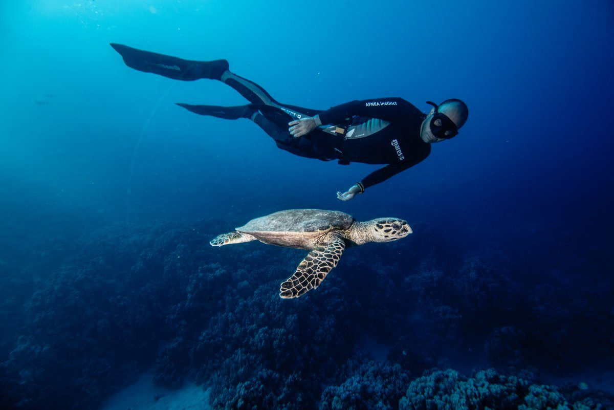 Freediving in Mexico