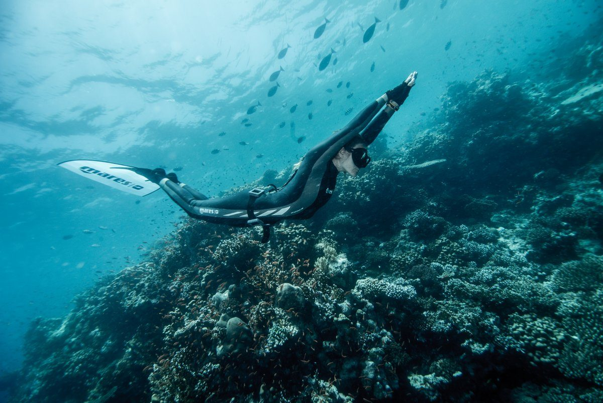 Freediving courses in Mexico