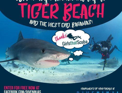 Win A Trip To Tiger Beach Bahamas