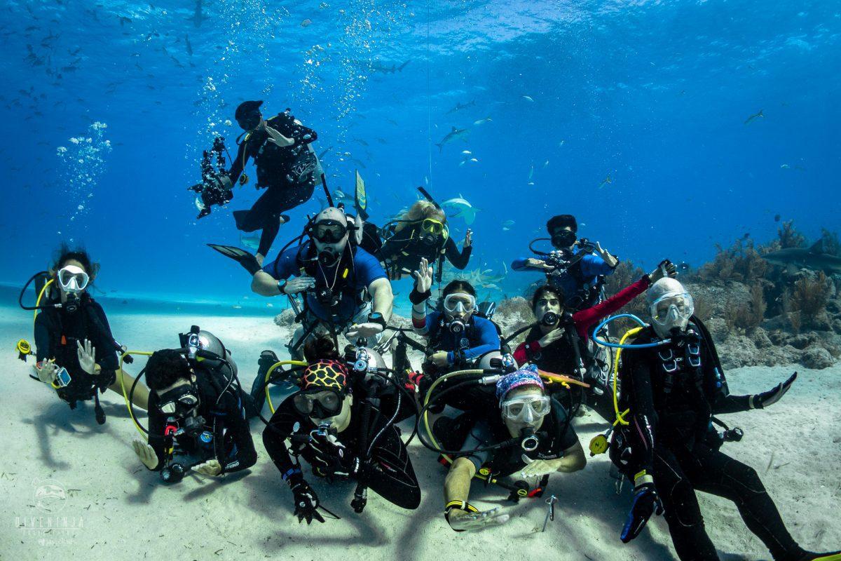 Dive Ninja Expeditions tiger shark diving trip to Bahamas
