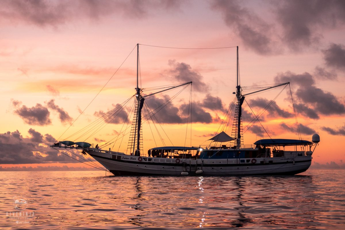 The Palau Siren liveaboard at sunset
