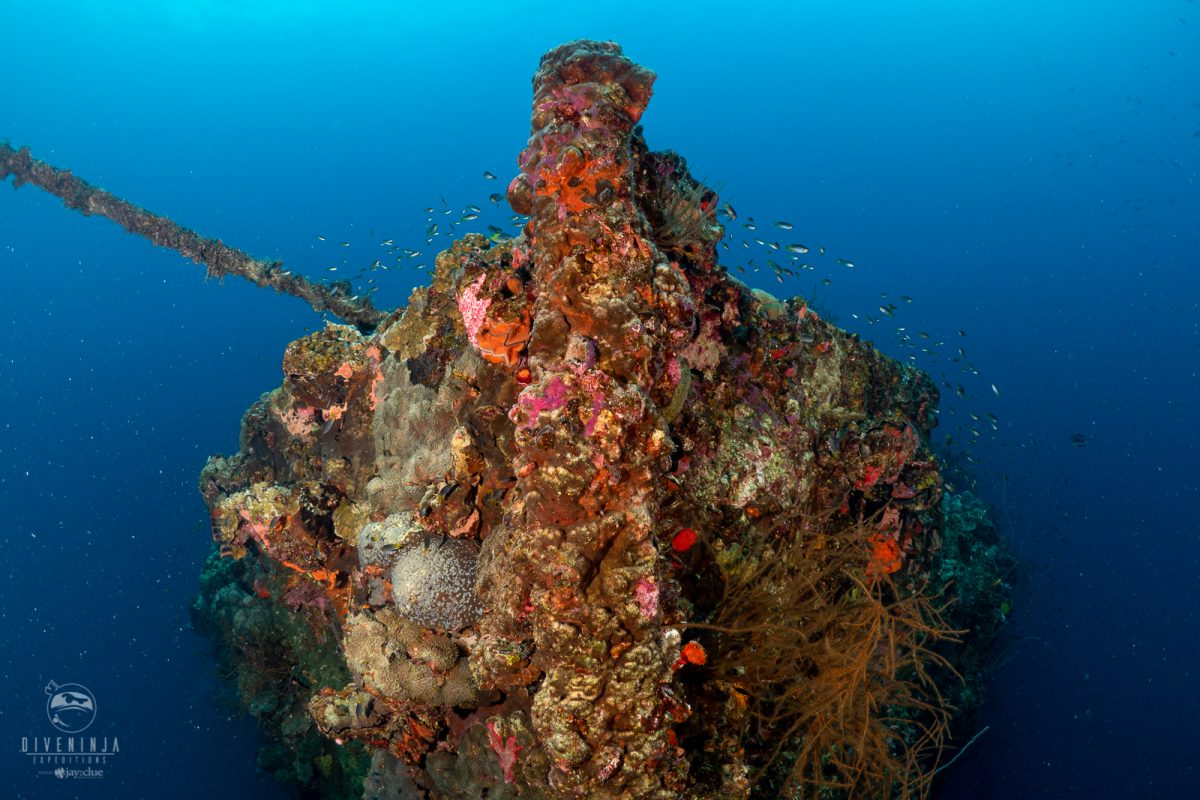wreck diving in Palau onboard the Palau Siren with Dive Ninja Expeditions