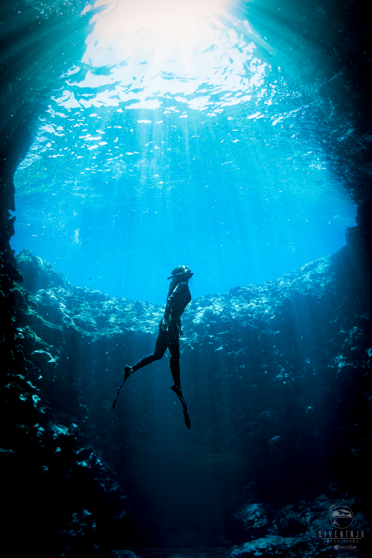 Freediving at Swallows Cave, Vava'u Tonga with humpback whales. Photo by Jay Clue, for Dive Ninja Expeditions