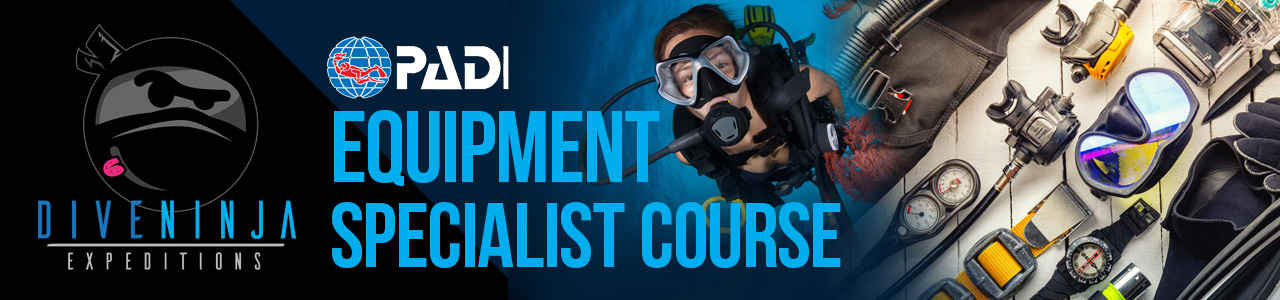 PADI Equipment Specialist course online in Cabo San Lucas, Mexico