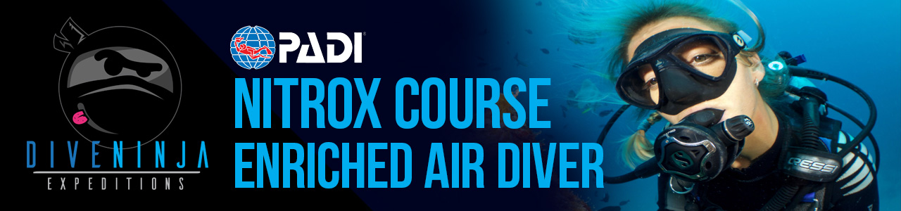 PADI Nitrox Course / Enriched Air Diver Online Course