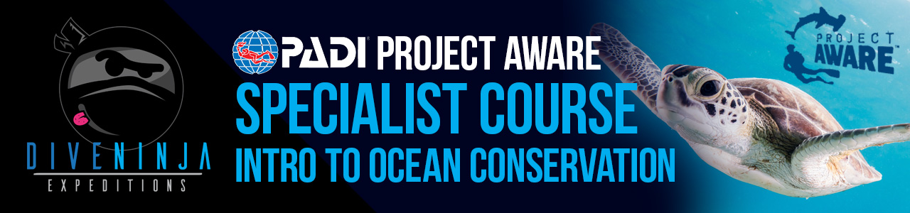 PADIProject AWARE Specialist Online Ocean Conservation Course