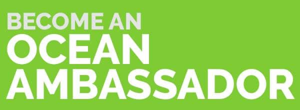 Divemaster: Become an ocean ambassador