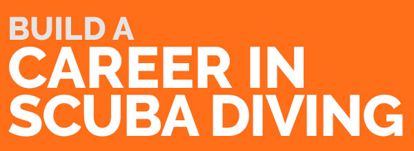 Divemaster: Build a career in scuba diving