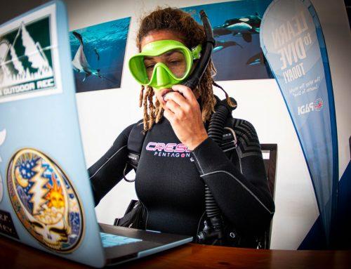 Special Online PADI Divemaster Program