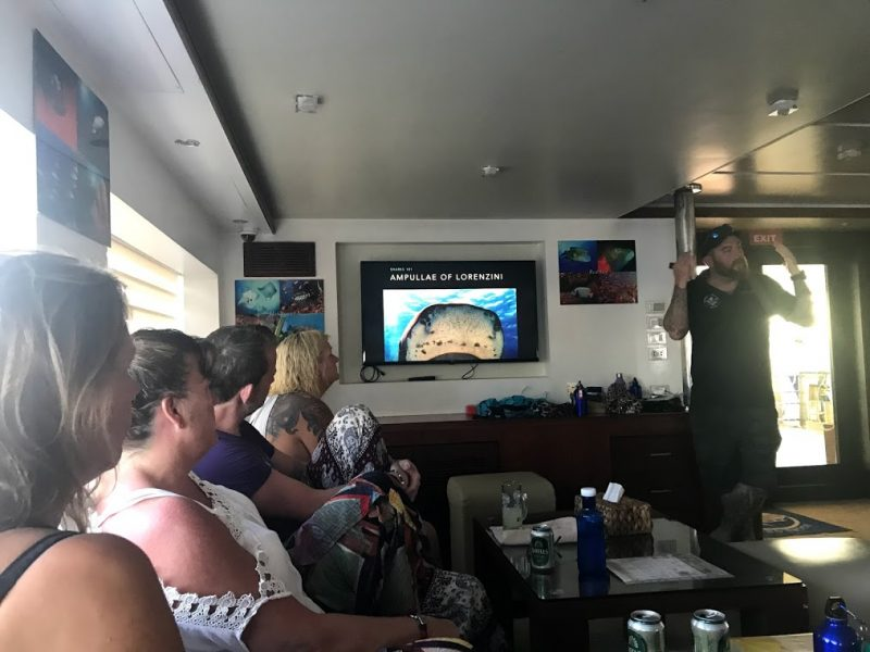 ay giving a talk on sharks - on expedition with Dive Ninjas in the Maldives