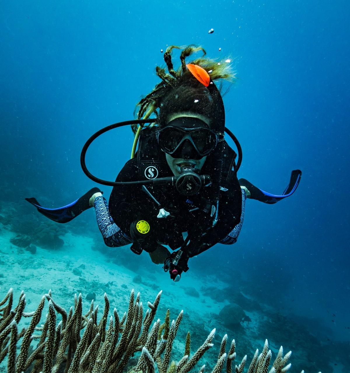 Diving GBR w/David Girsh 2018