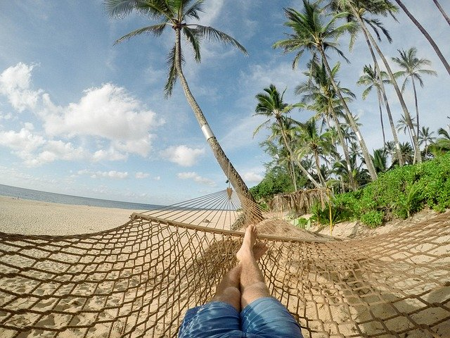 Coconuts - idyllic, but more dangerous than sharks