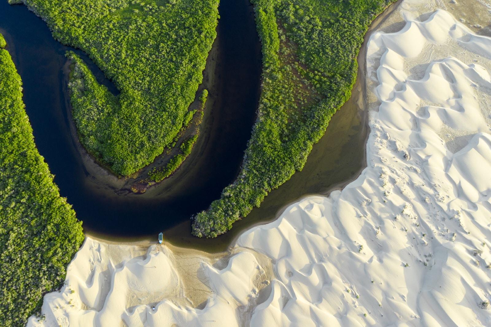 Mangroves & dunes in Bahia Magdalena, Baja, Mexico