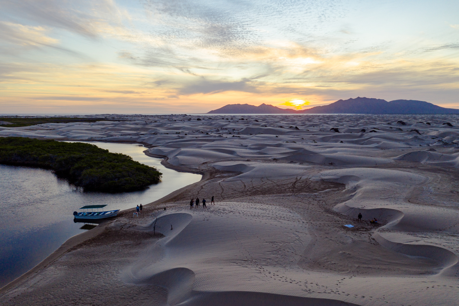 Dunes, sunset and mangroves, Magdalena Bay, Baja, Mexico