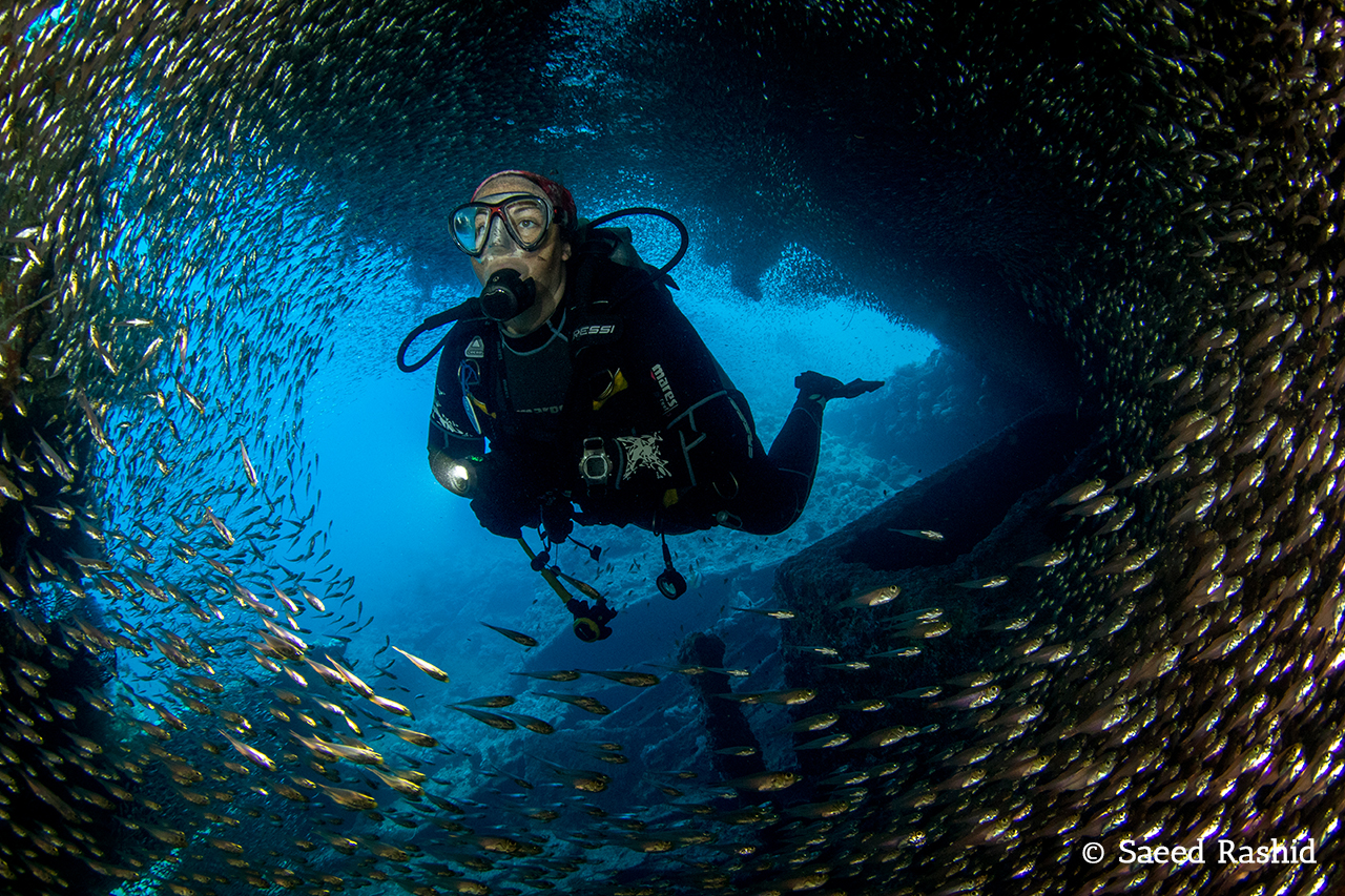 Diving in the Southern Red Sea With Dive Ninja Expeditions and Blue o Two