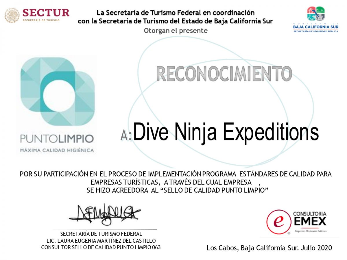 Punto Limpio Covid19 Certification Dive Ninja Expeditions