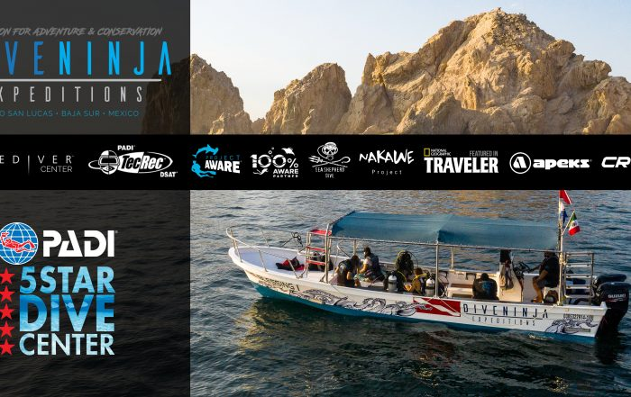 PADI 5 Star Dive Center in Cabo San Lucas Mexico