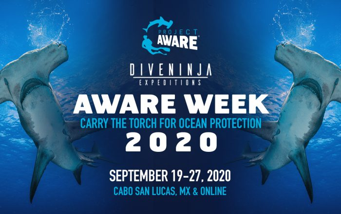 AWARE Week 2020 with Project AWARE, PADI, and Dive Ninja Expeditions