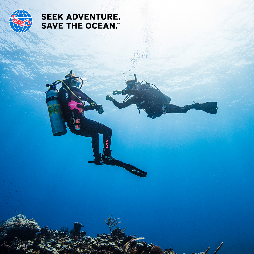 Seek adventure, save the ocean. PADI IDC Cabo San Lucas