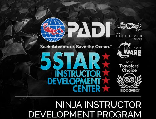 Announcing Our New PADI IDC Center in Los Cabos