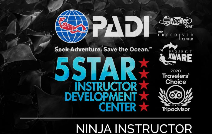Ninja PADI Instructor Development Course IDC in Los Cabos, Mexico